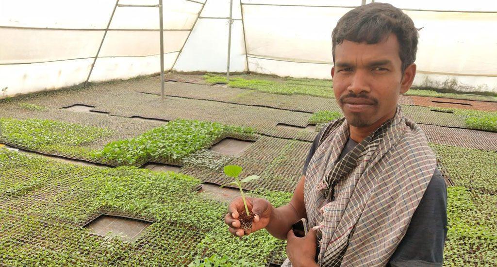 झारखंड के आदिवासी किसान कृषि-आधारित आय कैसे बढ़ाते हैं