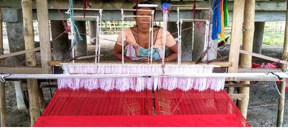 क्या हैंडलूम व्यावहारिक रूप से लाभदायक ग्रामीण आजीविका प्रदान कर सकता है?
