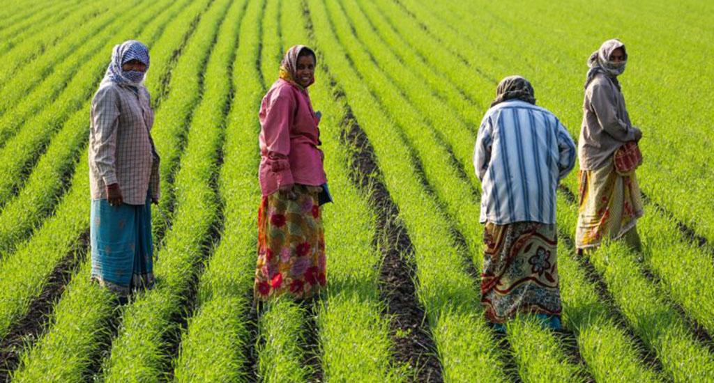 कृषि कार्य में बढ़ने से महिलाओं के पोषण पर प्रतिकूल ..
