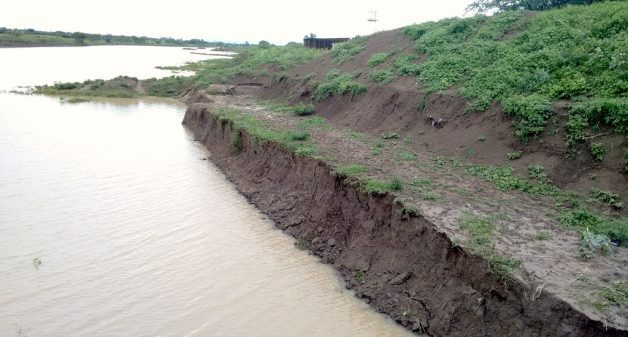 The widening of Manjra river at Araskheda village shows fragile banks that lead to renewed silting. (Photo by Gajanan Chafekarande)