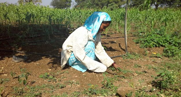 Farm labor Pratibha Vilas Kamthe has recently gone from cash salary to salary paid into her bank account. (Photo by Gouri Agtey Athale)