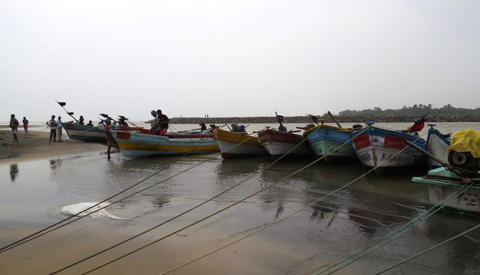 Fishermen decide to fish or not based on ocean statistics and weather forecast through the mobile app. (Photo by Jency Samuel)