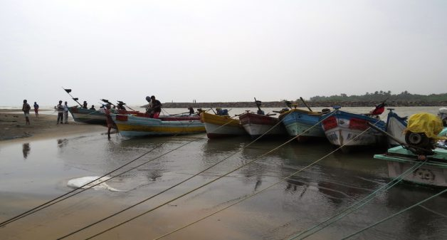 Tamil Nadu fishermen leverage smartphone technology to boost fish yields