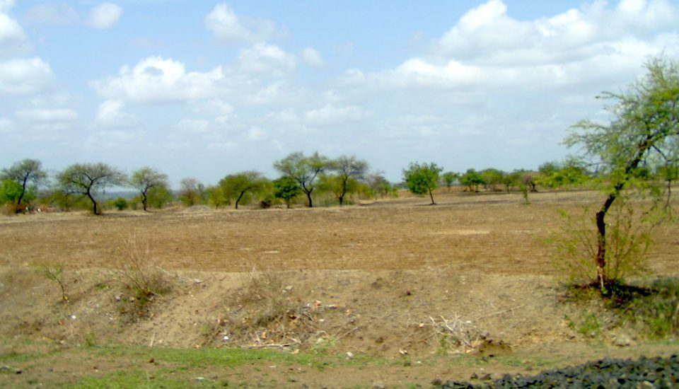 Marathwada suffers from a chronic shortage of water and rainfall is often scanty. (Photo by Harini Calamur)