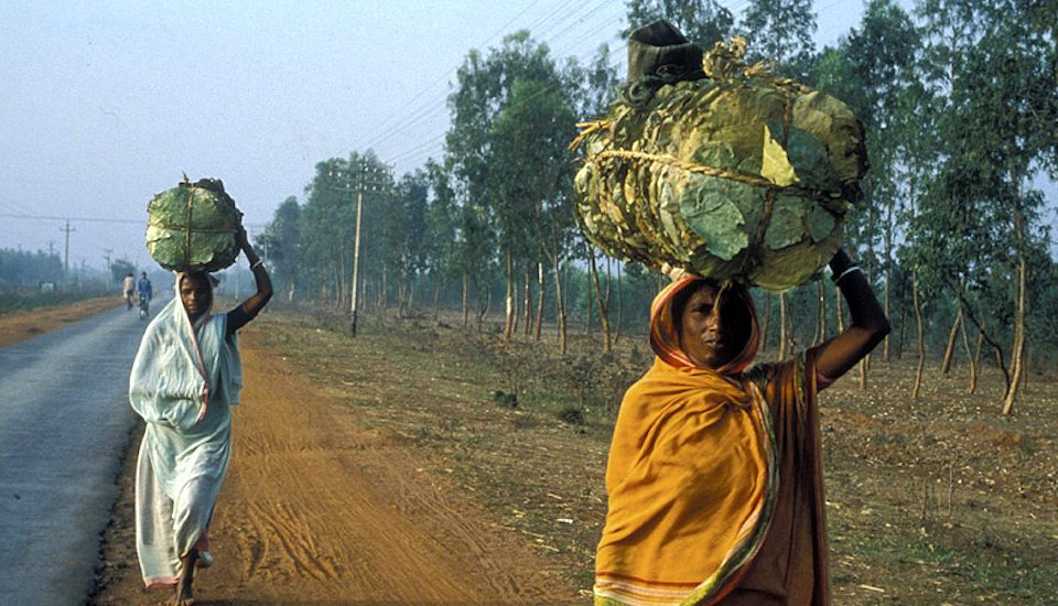 Women carrying head loads is a common sight all over India. (Photo by Curt Carnemark)