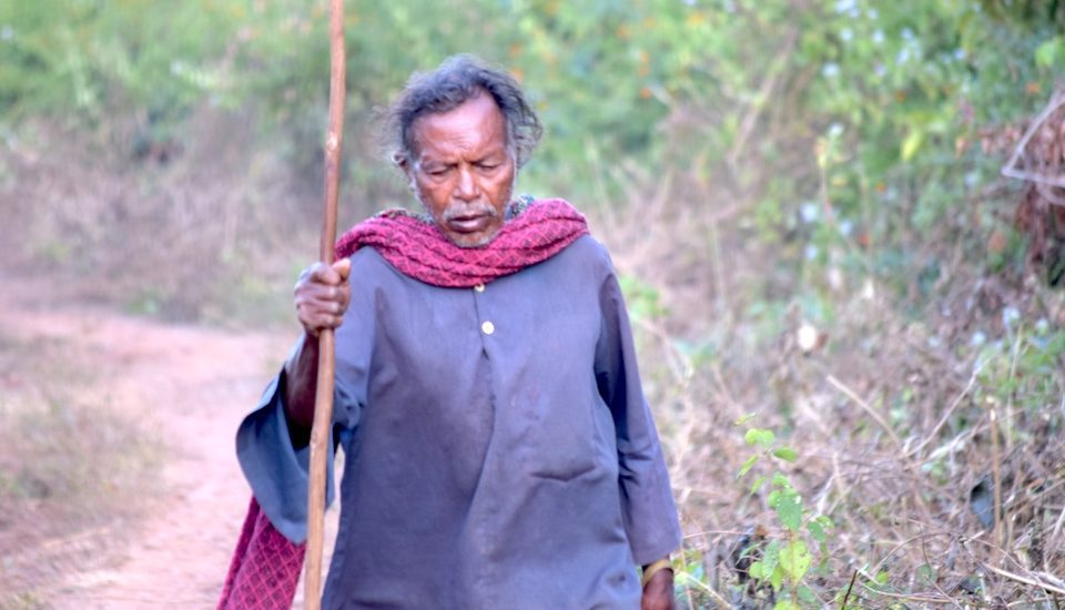 Jhita Kutruka is the lone survivor of Ankurbali village in Niyamgiri hills. (Photo by Basudev Mahapatra)