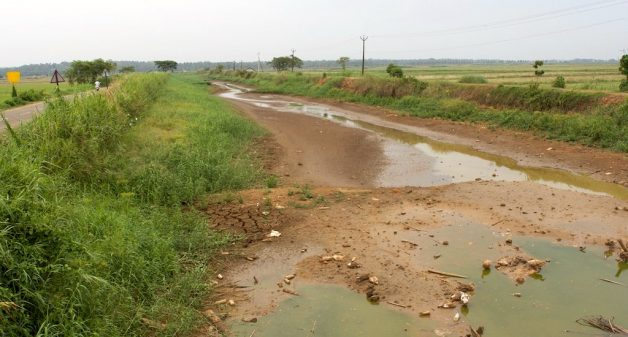 An almost dry canal at Pullu. (Photo by S. Gopikrishna Warrier)