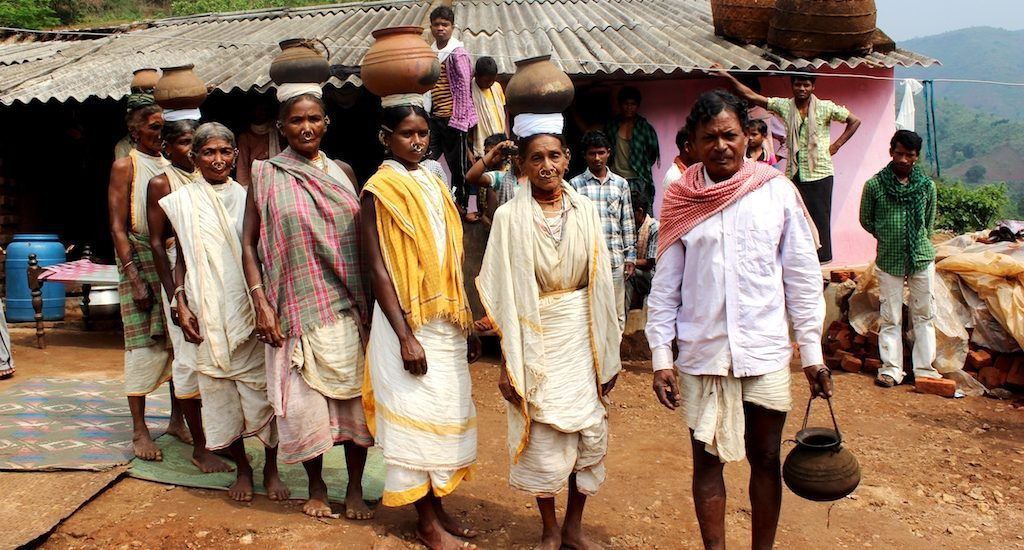 Millets travel from tribal farms to dinner tables