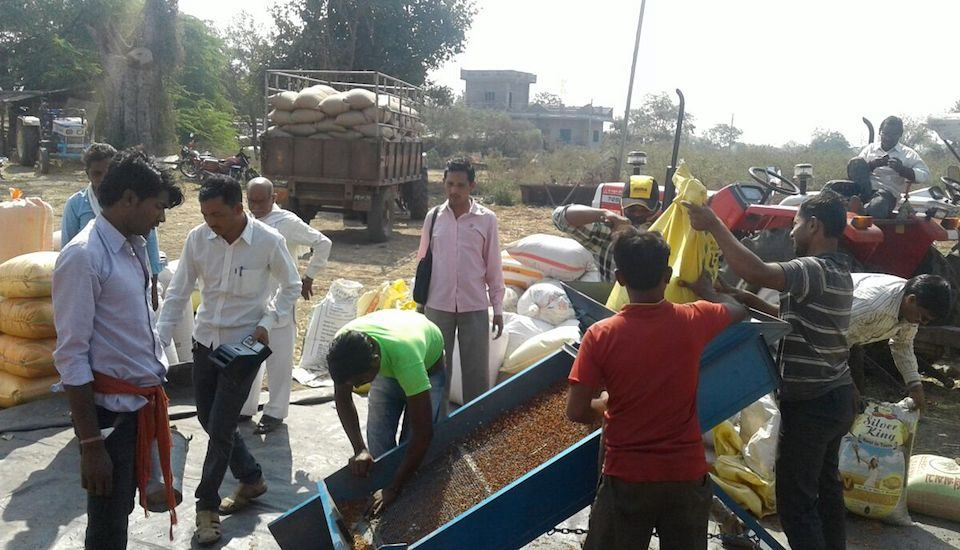 Procurement of produce is in progress at a market yard. (Photo courtesy MAHAPFC)