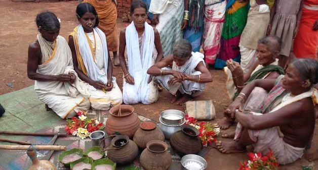 Niyamgiri tribe revive wild harvests after Vedanta victory