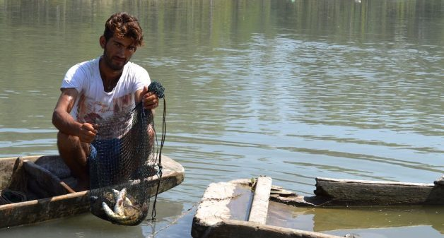 Shiraz Ahmad Goroo shows his meager catch while complaining about dwindling fish in River Jhelum. (Photo by Athar Parvaiz)