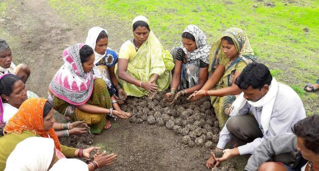 Villagers preparing seed balls to reclaim land cleared of lantana at Kharaudi village in Madhya Pradesh. (Photo by Foundation for Ecological Security)