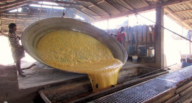 The entire family is involved in the slow, laborious process of making jaggery. (Photo by Chithra Ajith)