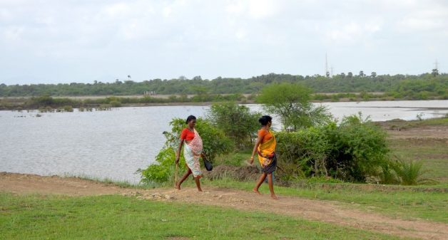 Tarapur villages use saltpan to harvest water