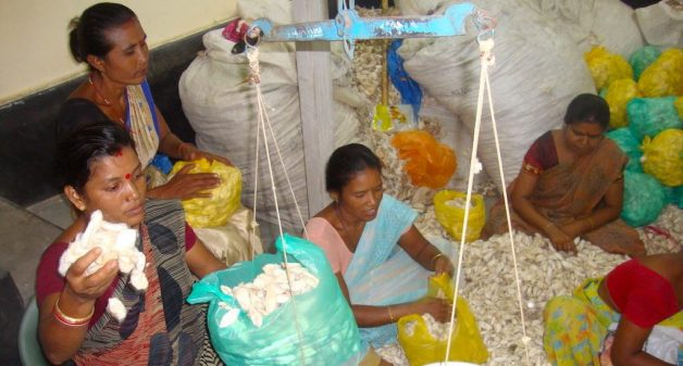 Kamrup women lead Eri silk revival for improved livelihoods