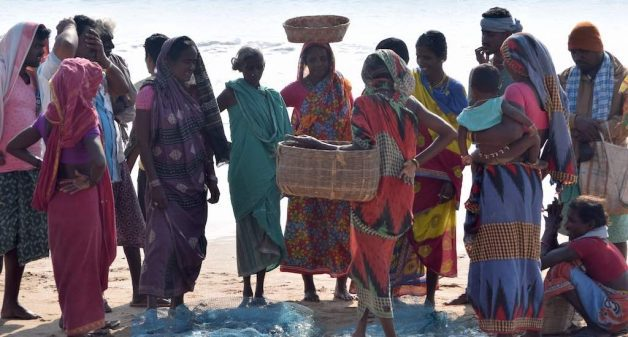 Fisherwomen belonging to Samudram federation at Podampeta beach to procure fish that they would sell in local markets (Photo by Basudev Mahapatra)