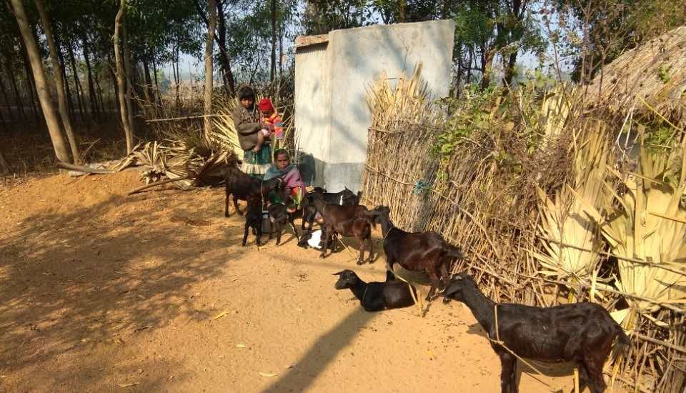 Tribal women in Birbhum have found an alternative source of earning by rearing goats. (Photo by Tagore Society for Rural Development)