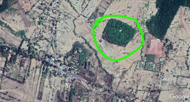 A satellite image of Amba village and surroundings with the green circle marking the sacred grove. Credit: Google