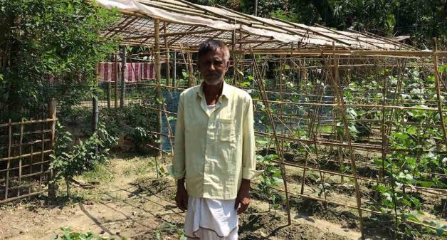 Assam village become trailblazers in adaptive agriculture