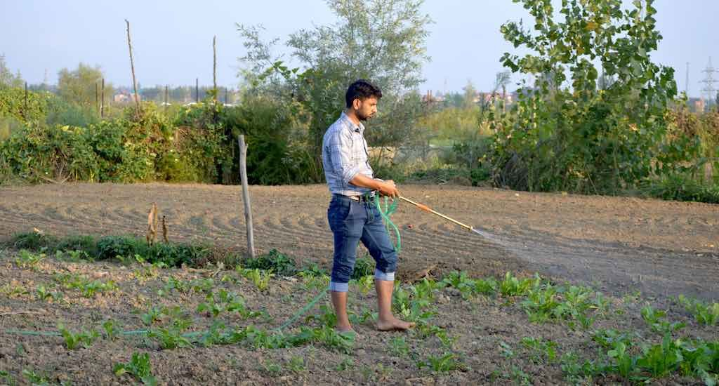 Next-gen Kashmir farmers turn to water wisdom