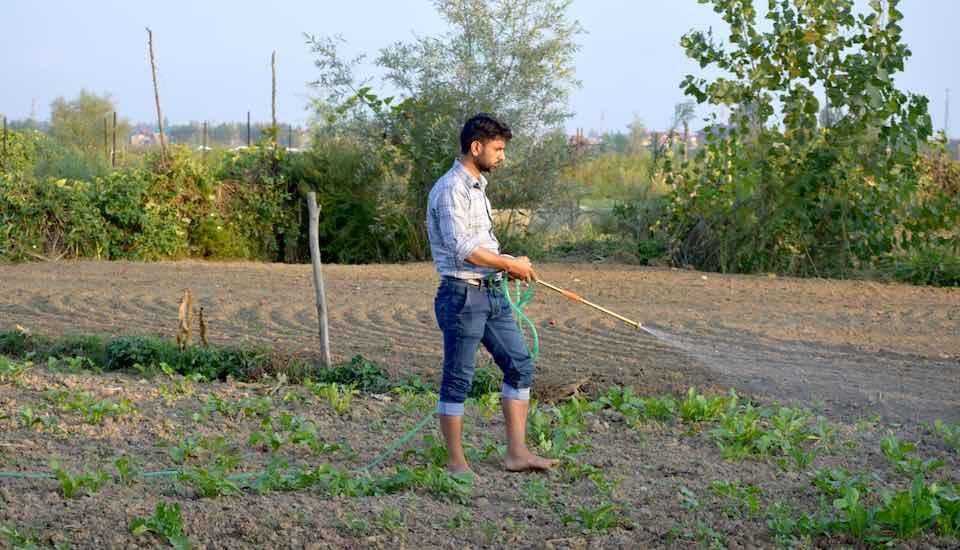 A young Kashmiri farmer working in his field (Photo by Athar Parvaiz)