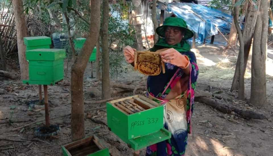 A tribal woman in Dantewada district, dependent on forest produce and rain-fed agriculture, has enhanced her income by raising honeybees (Photo by Pragati Prayas Samajik Sewa Sanstha)