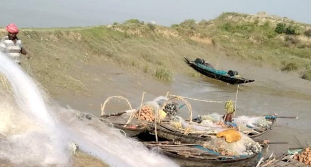 Hilsa fishers driven to the edge by overfishing