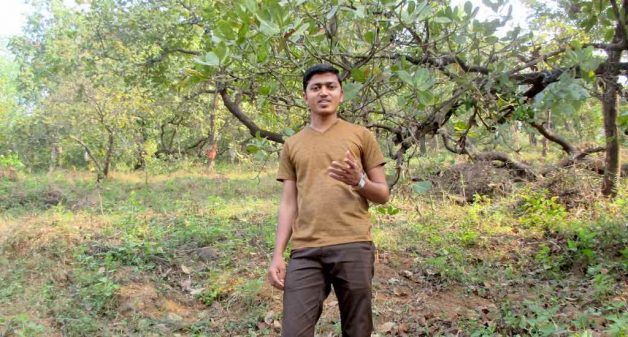 Teacher and environmentalist Vitthal Shelke campaigns among cashew farmers and workers to avoid direct confrontation with monkeys (Photo by Tarun Kanti Bose)