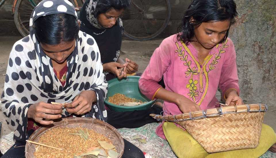 Villagers in Murshidabad prefer girls as they can start rolling beedis at a very young age, adding to the family income (Photo by Gurvinder Singh)