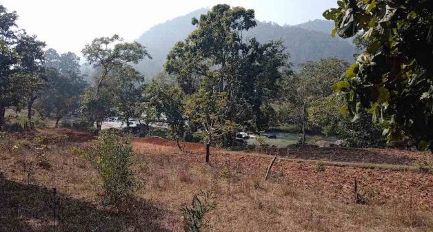 Farmland adjacent to a perennial water stream, left fallow after harvest of kharif crop (Photo by VAF)