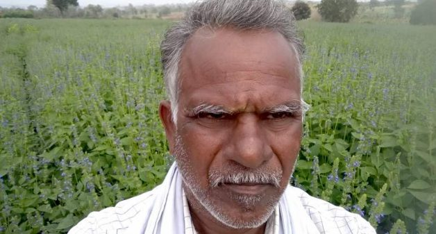 Farmers like Madappa of Bidarahallihundi village find returns from chia cultivation much more than that from other crops (Photo by Hiren Kumar Bose)