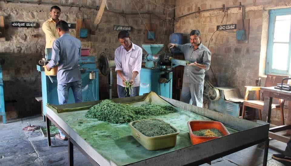 The soap-making unit of the Khadi and Gramodyog Sahakari Uttpadak Sangha in Hudali is known for its nominally priced Kutir soap made of anti-bacterial neem oil (Photo by Amoolya Rajappa)