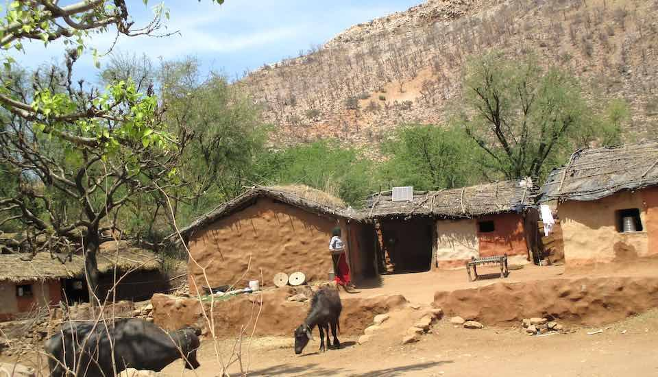 Bera, a village of pastoralists, is one of the 29 villages to be relocated from Sariska Tiger Reserve area (Photo by Tarun Kanti Bose)