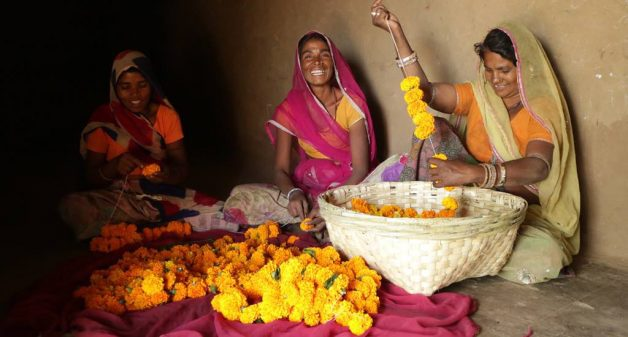 Women farmers who were struggling to make a living off their farms find cultivation of marigold profitable, selling the produce as flowers and garlands (Photo by Manish Kumar Shukla)