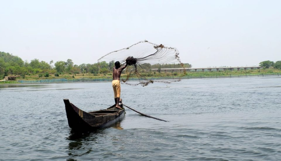 Fishing in the Ansupa Lake (Photo by Basudev Mahapatra)