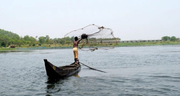 Local communities restore Ansupa Lake in Odisha