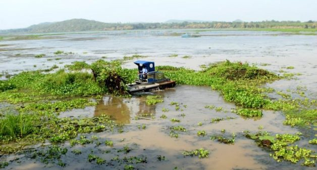 The mechanised weed harvester at work at Ansupa Lake (Photo by Basudev Mahapatra)