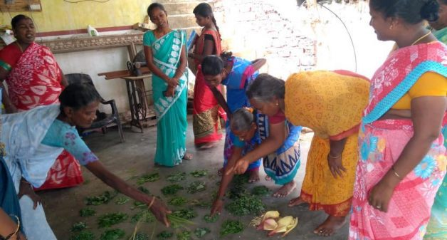 Rajeshwari and other women of her village work together to make medicine balls for the cattle of the entire community (Photo by Catherine Gilon)