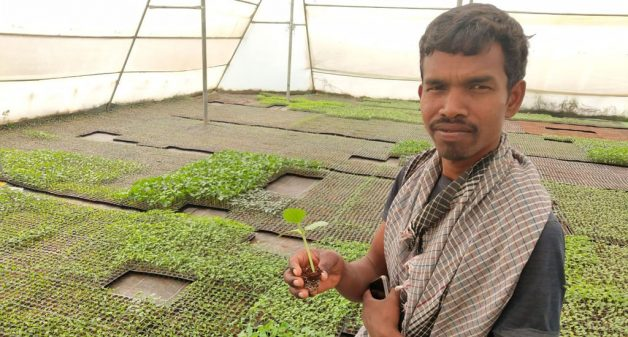 How Jharkhand's tribal farmers increase farm-based income