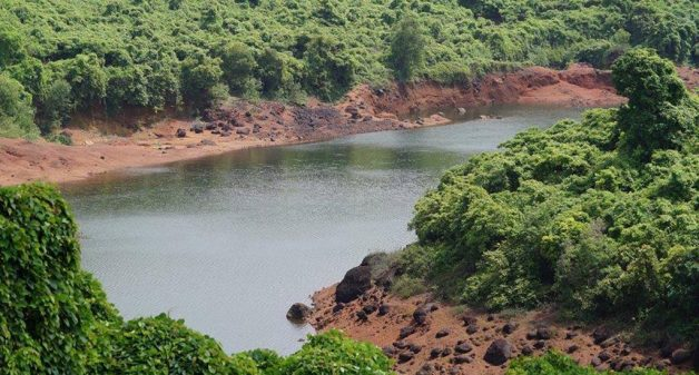 Community efforts save Goan heritage lake