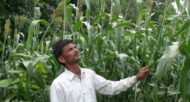 Farmer runs people's academy to share knowledge