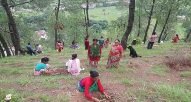 Community ensures forest protection and sustainable management