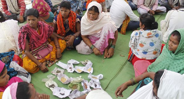 Women sustain traditional wisdom of conserving indigenous seeds