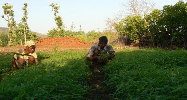 Conservation of bio-resources improves farmer's livelihood