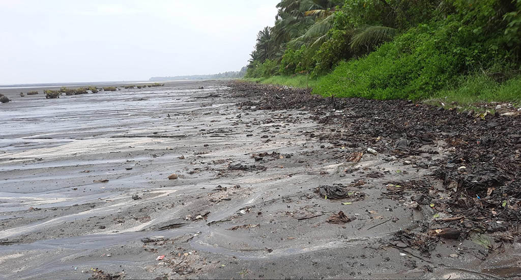 Barge oil spill hurting beach, mangrove and livelihoods